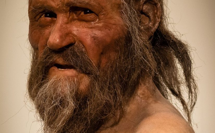 New analyses of Ötzi, the Iceman's tools